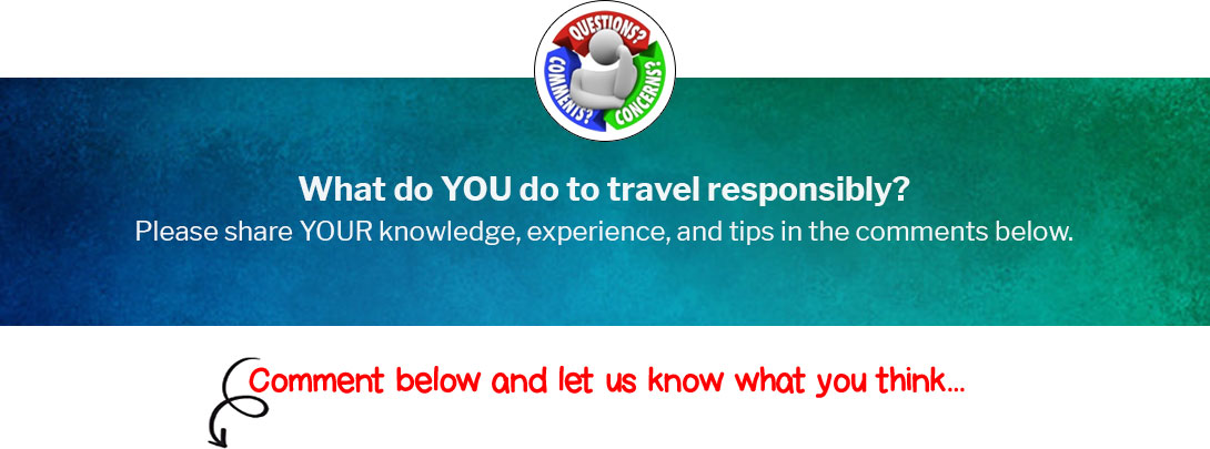 What do YOU do to travel responsibly?